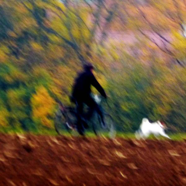 Unscharfe Radltour im Herbst