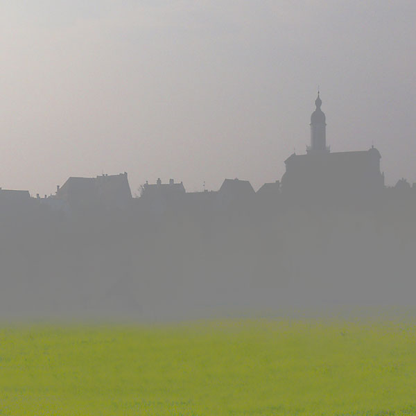 Neuburg im Nebel